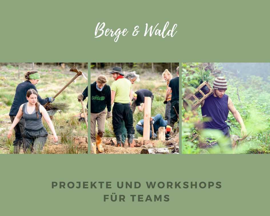 Green Team Event Berg und Wald
